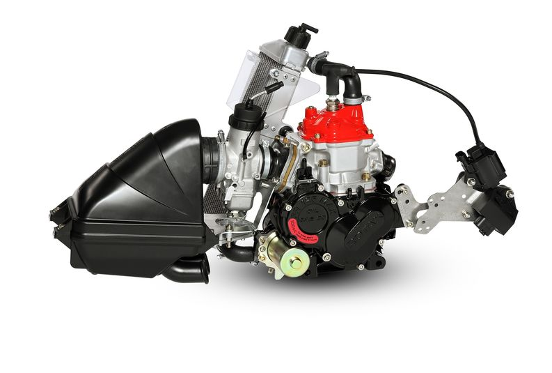 Rotax engines